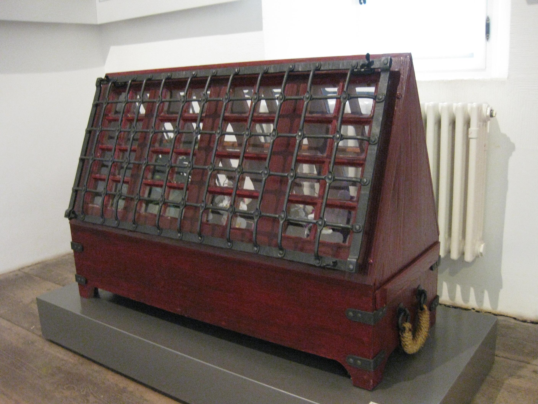 Ward'sche Kiste (Nachbau von Andreas Hildebrandt im Deutschen Gartenbaumuseum in Erfurt)