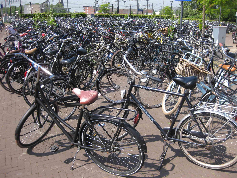 Venlo Fahrräder
